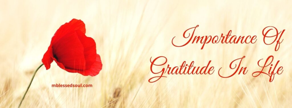 Importance Of Gratitude In Life.