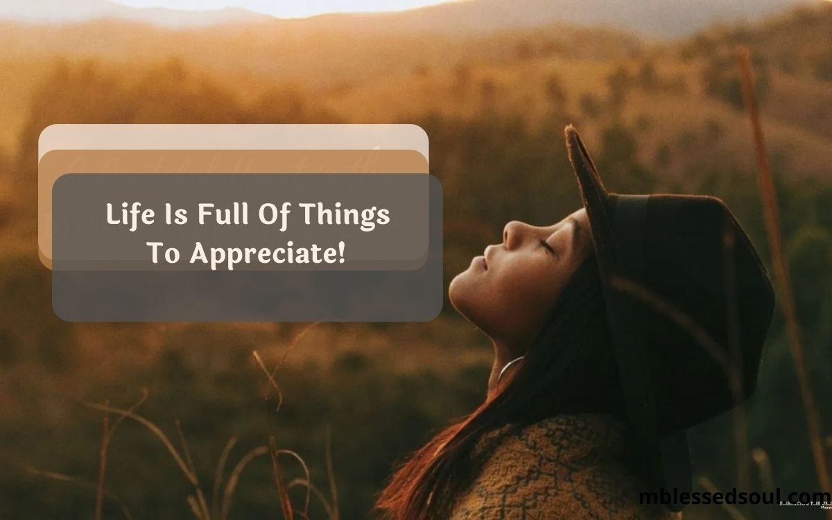 Life Is Full Of Things To Appreciate.