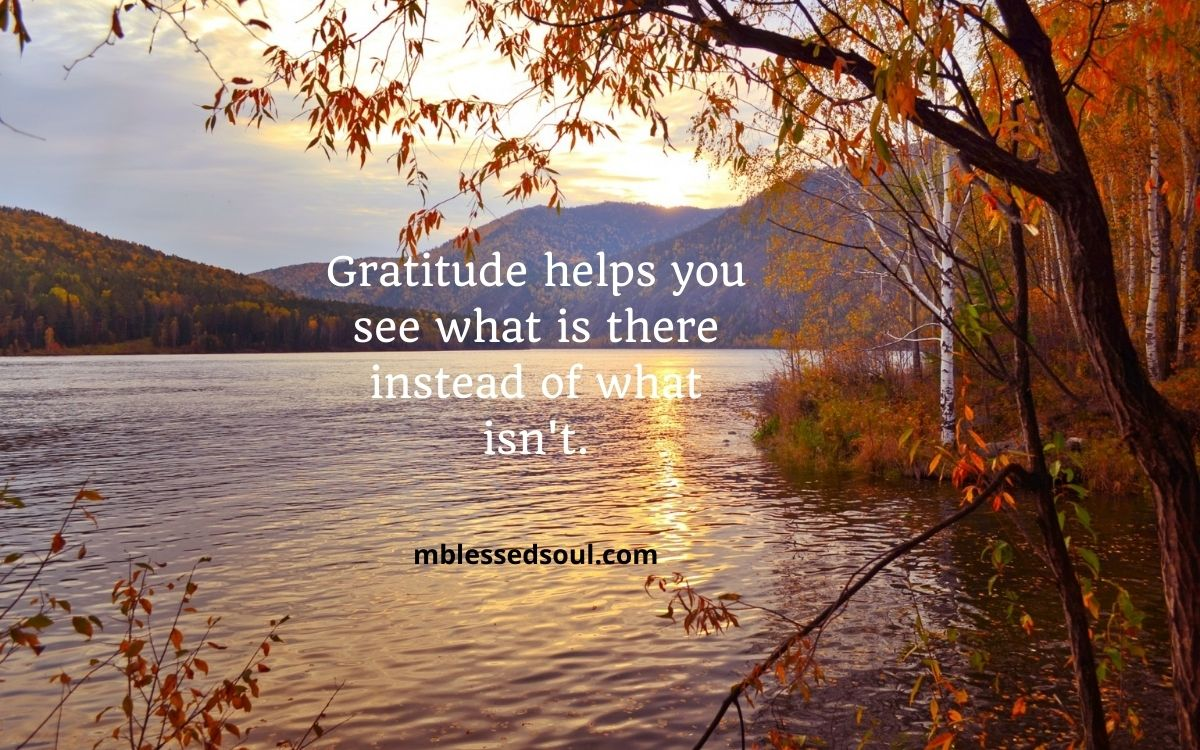 Powerful Gratitude Quotes To Uplift You.